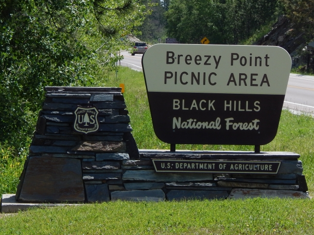 Breezy Point picnic area in South Dakota.