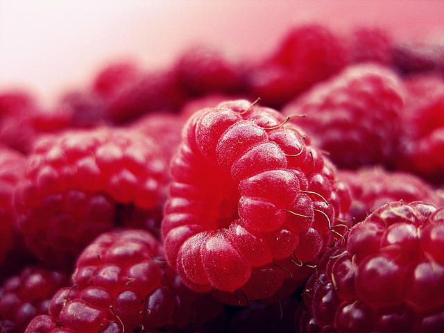 fresh raspberry haiku